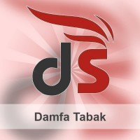 Damfa Liquid - 10ml - Tabak v2