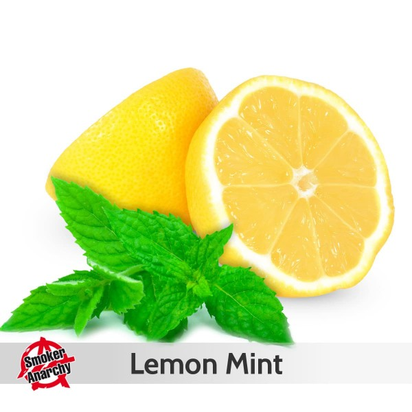 Smoker Anarchy Liquid 10ml Lemon Mint